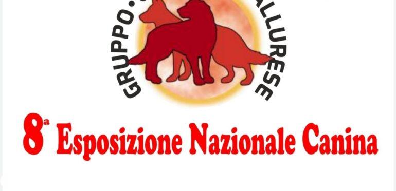 Esposizione Nazionale Olbia 2020